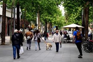Cumplir los niveles de contaminación de la OMS evitaría al menos 250 muertos cada año en Barcelona, alerta el Ayuntamiento.