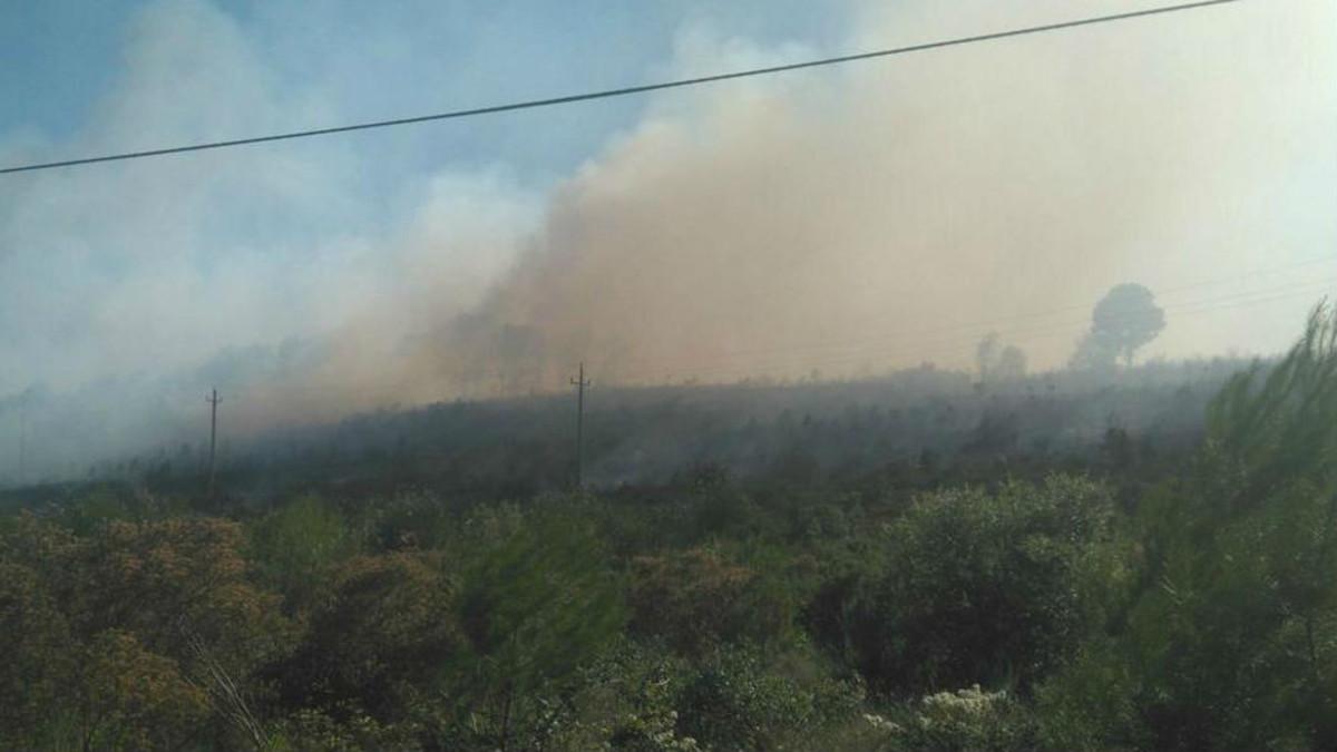 Imagen del incendio en Vilopriu, Girona.