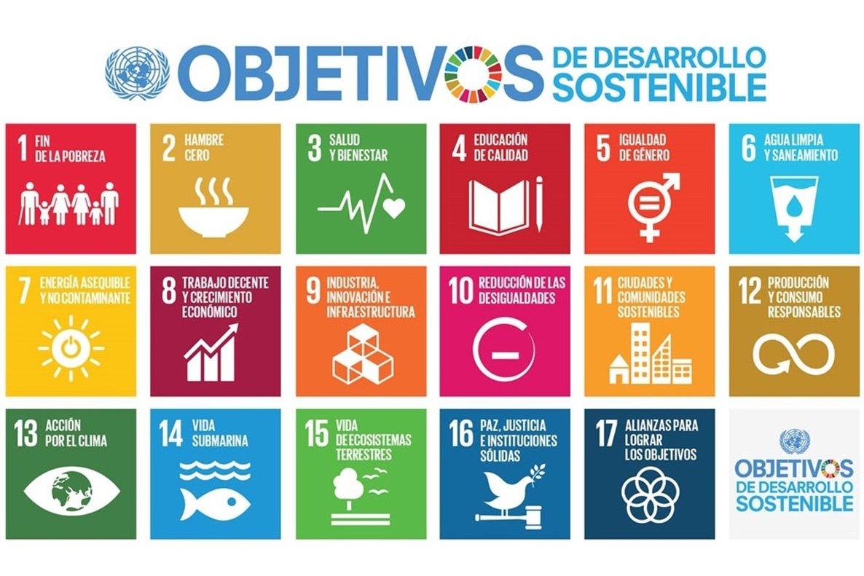 Los ODS son 17 objetivos en total, compuestos por 169 metas y 232 indicadores