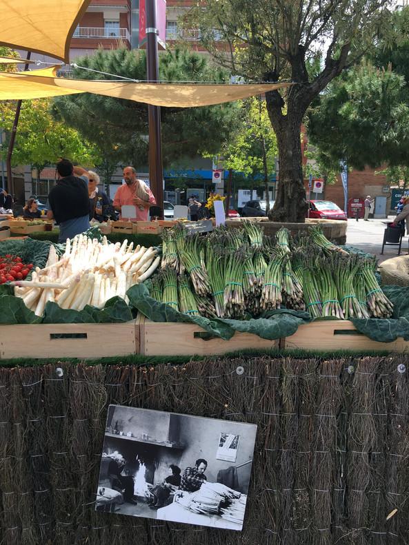En la parada de Juan Antonio Hernández Colomé se pueden ver fotografías de sus antepasados trabajando el espárrago