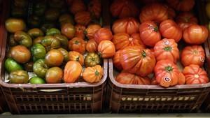 Detectades restes químiques en hortalisses de Barcelona