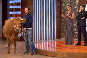 Lluvia de críticas a 'Masterchef' por Patricia, la vaca que llevó a plató