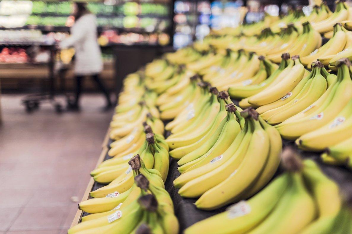 La esperanzadora fibra del árbol del plátano