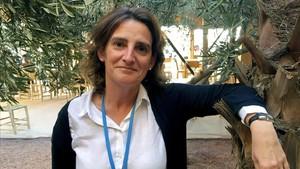 Teresa Ribera, àmpliament preparada a Medi Ambient