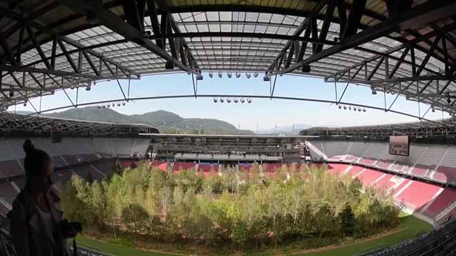 Un bosque dentro un estadio de fútbol austriaco como expresión artística.