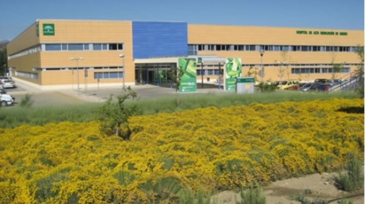 El Hospital Comarcal de Guadix.