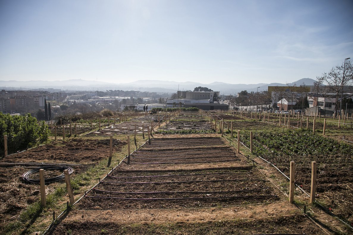 Rubí organitza un curs d'horticultura per fomentar la inclusió social d'una dotzena de joves