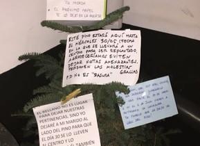 La surrealista guerra de vecinos por un árbol abandonado en el rellano