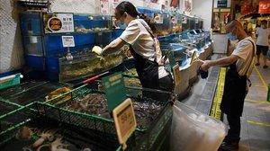 Sección de una pescatería de un supermercado de Pekín.