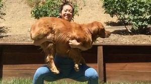 Una de las 'instagramers' que ha realizado el reto 'Squat your dog'.