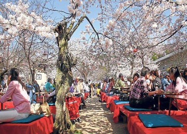Equinoccio de primavera en Japón