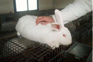 La organización internacional Animal Defenders destacó la medida como una victoria.