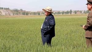 Kim Jong-un visita una granja custodiada por el Ejército norcoreano, en una imagen difundida por la agencia oficial norcoreana KCNA.
