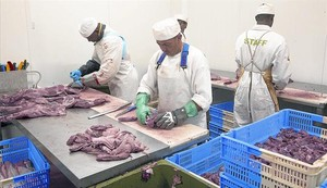 Operarios despiezan carne en un matadero.