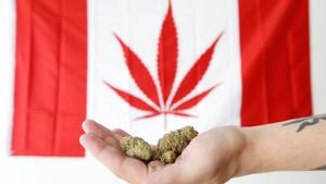 Canadá se convierte en el segundo país en legalizar la marihuana