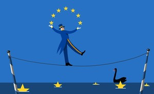 La Unión Europea, nuestro cisne negro.