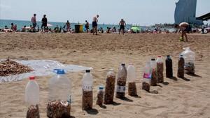 Desenes de persones recullen burilles a la Barceloneta