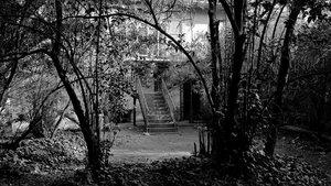 El jardín con la escalera de hierro colado de la Casa Amatller, en el año 1970.