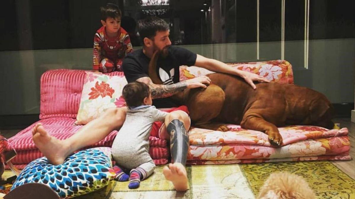 Escena hogareña de Messi con dos de sus hijos y Hulk, la mascota.