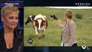 """Glòria Serra habla en 'El hormiguero' de su vídeo viral con una vaca: """"No entiendo que me hiciera caso"""""""