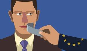 El TEDH y la libertad de expresión en las campañas electorales