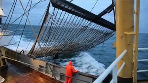 Un pesquero holandés, con una red eléctrica.