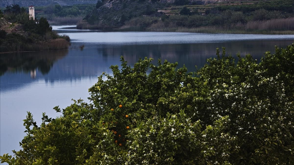 El Júcar esel río español en el que se han detectado más plaguicidas.