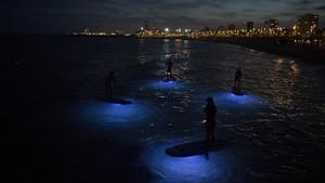 Cuatro iluminadosdurante una salida nocturna de Blue Salt School. Sábado noche sobre tablas de paddle surf con luces, frente a la playa de la Nova Mar Bella.