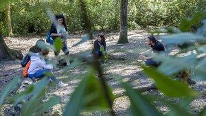 El guía Àlex Gessecon cuatro urbanitas durante un baño de bosque en Collserola.