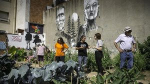 La Prosperitat s'organitza per defensar el seu hort 'okupat' comunitari
