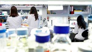 La Fundació La Caixa destina 1,8 milions a sis projectes d'investigació contra la Covid-19