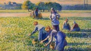 El cuadro reclamado, 'La cosecha de guisantes, de Camille Pissarro.