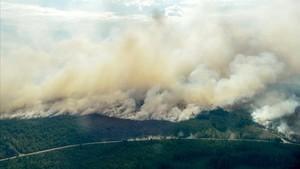 Suecia, devastada por incendios forestales