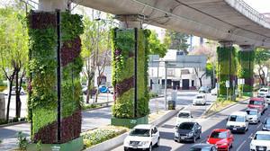Primeras columnas cubiertas de verde en la Ciudad de México.