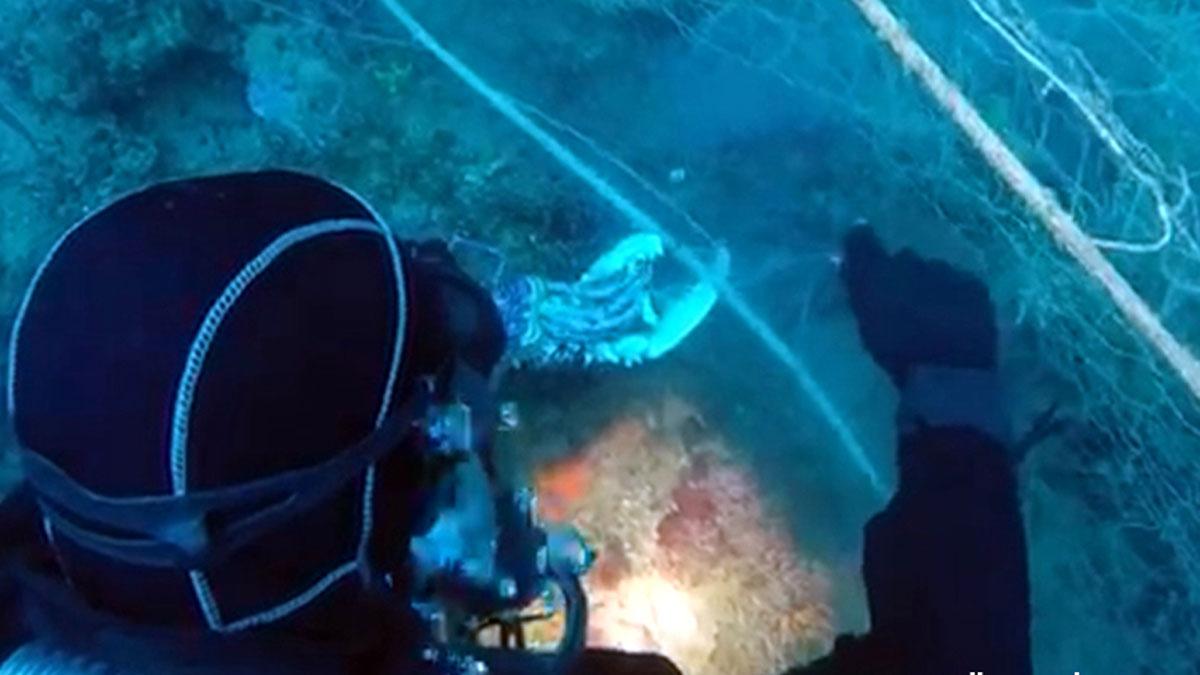 Retirada red de pescadores abandonada del fondo marino de Llafranc