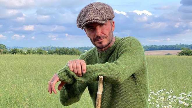 David Beckham vendrà la seva pròpia mel orgànica