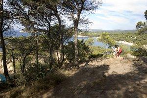 Camino de Cala Estreta (Palamós) hasta la playa del Castell.