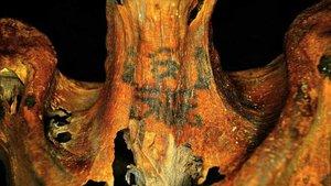Cuello tatuado de una mujer de unos 3000 años de antigüedad, descubiertos el pasadomayo.