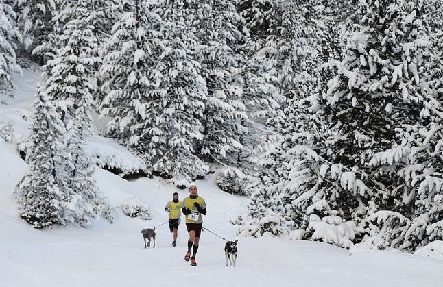 Dos corredores de la modalidad de 'canicross', durante la prueba de la copa Gos Àrtic celebrada el pasado fin de semana en Port Ainé.