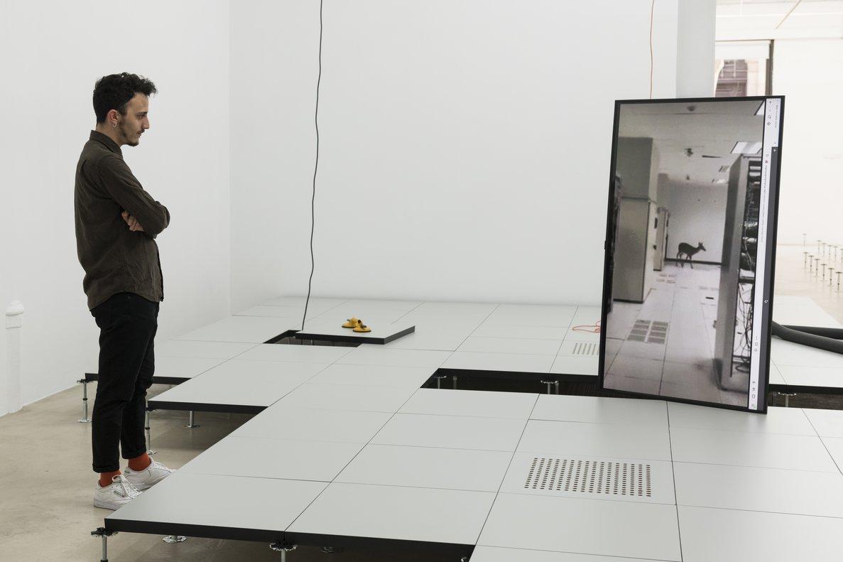 Una imagen de la instalación creada por Mario Santamaría.