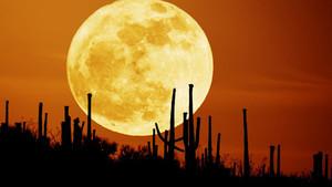 Luna de Cosecha, la más cercana al equinoccio de otoño, sobre un campo de Arizona (EEUU).