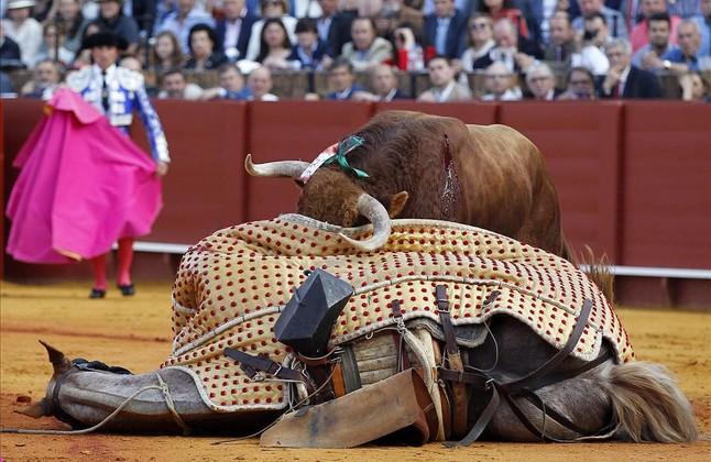Un toro derriba al caballo del picador en la plaza de la Maestranza, durante la Feria de Abril de Sevilla.