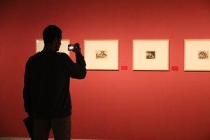 La exposición 'Desastres de la Guerra' de Francisco de Goya en el Centre Cultural Terrassa.