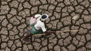 Sequía en la India, en una imagen de archivo.