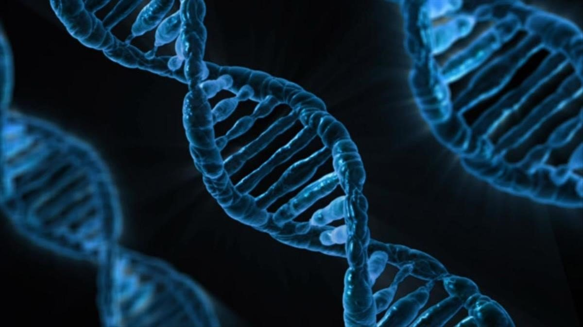 Representación artística de una cadena de ADN, en una imagen de archivo