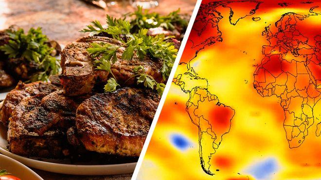L'ONU demana menjar menys carn contra la crisi climàtica