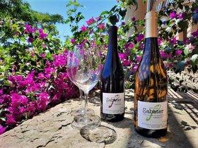 Botellas de vino de la Vinya d'en Sabater de Santa Coloma.
