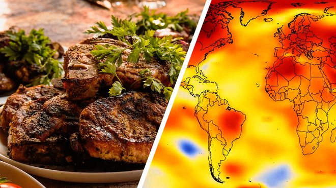 La dieta planetaria: ¿comer diferente puede salvar el planeta?