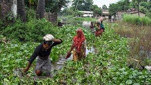 Los residentes de la aldea de Jaynagar en el distrito de Sitamarhi en el estado indio de Bihar, llevan sus pertenencias entre las aguas de las inundaciones después de las fuertes lluvias monzónicas en julio de 2019