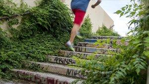 Las plantas cubren las escaleras e este paso para peatones